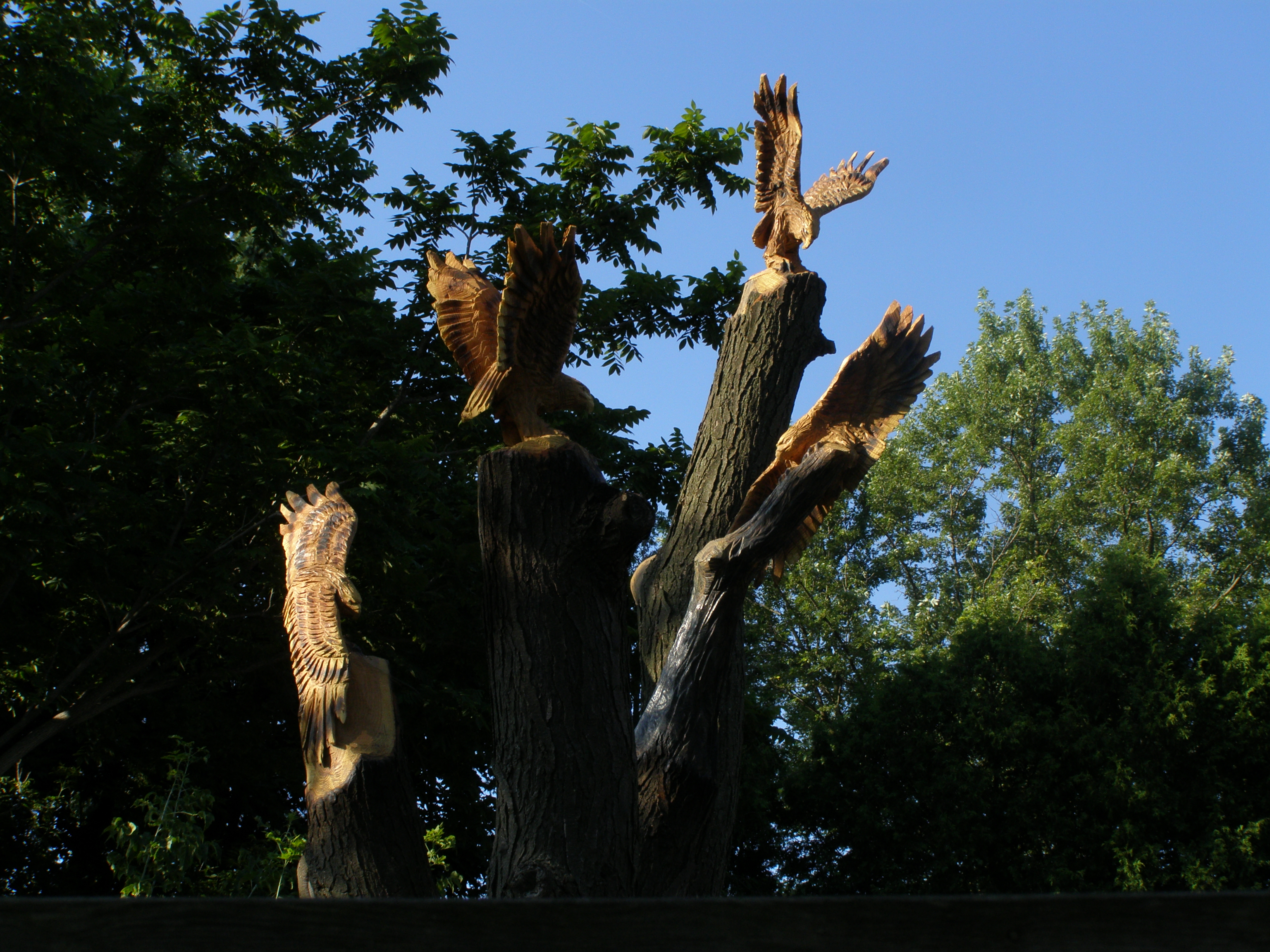 Carving, Chainsaw, Hawks
